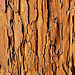 Antique Wood Texture from Antigua Guatemala