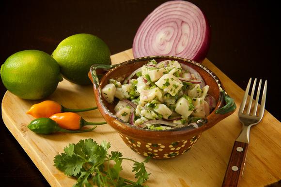 Rudy Giron: Food Photography &emdash; Ceviche Peruano de Pescado